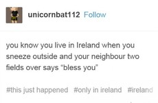 17 times Irish Tumblr was right on the money