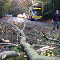 Storm Barney is ripping down trees and creating travel chaos all over Ireland