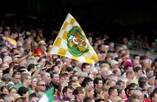 Offaly chiefs to resolve impasse as manager quits 24 hours after taking over