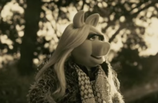 Take a break and watch Miss Piggy's heartbreaking Adele cover