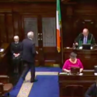 Peter Mathews has just been kicked out of the Dáil again