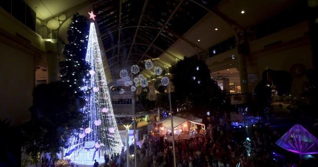 Australian Christmas tree sets world record for boasting over 500,000 lights