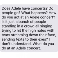This text sums up all expectations about Adele's Dublin shows