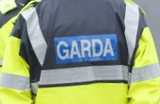 Man killed in late night crash was off-duty garda