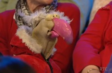 Dustin the Turkey tried to shift a member of the audience on the Late Late