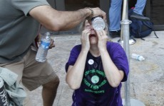 Demonstrators pepper-sprayed in Washington museum