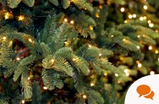 Fed up of sweeping up Christmas tree pine needles? Save them, they could prove handy
