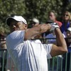 Up and down form continues for Tiger