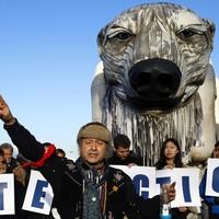 Giant polar bear among protesters at Paris climate talks