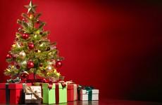 Gardaí go hi-tech to combat Christmas tree thieves