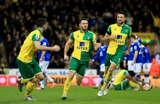Wes Hoolahan inspires Norwich comeback to earn a valuable point against Everton