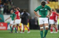 Ireland's Rugby World Cup adventure: the post-mortem