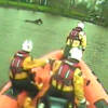 Video: Horse rescued after falling into river and being swept downstream