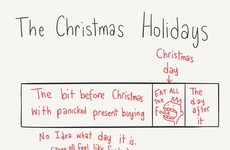 This chart perfectly sums up your Christmas holidays