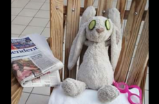 A toddler's bunny got lost in a five-star Irish hotel and became a Facebook sensation