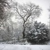 January will be the coldest month this winter - forecast