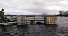 Farmers affected by flooding can apply for compensation from today
