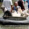 Thailand insists Bangkok is safe as monsoon floods advance