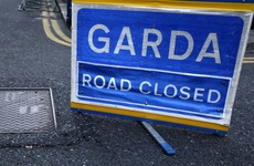 Woman dies after being struck by van in Tipperary