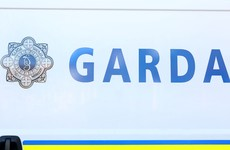 Man arrested over murder of Dubliner whose body was found in Meath field