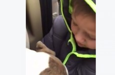 This little boy reunited with his lost dog is breaking hearts all over Facebook