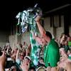 Limerick's 2013 Munster title-winning captain retires from inter-county hurling
