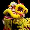 7 reasons Irish people need to start celebrating Chinese New Year
