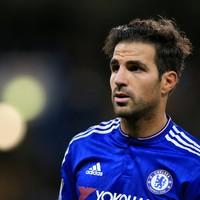 Chelsea sack steward after Fabregas 'snake' jibe