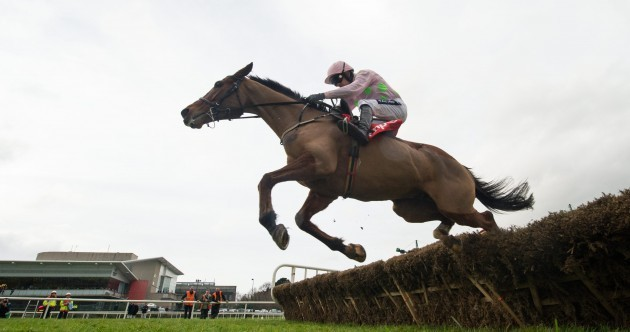 Faugheen makes good horses look very average with sublime Champion Hurdle win