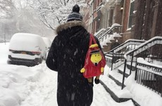 11 wonderful sights the blizzard brought to the US