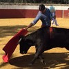 Spanish matador under fire for posting photo of himself bullfighting while carrying his baby