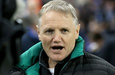 Schmidt rules himself out of Lions coaching role