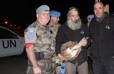 The UN has negotiated the release of a vulture suspected of spying for Israel