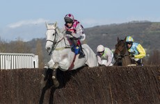 Smad Place capitalises as Gold Cup favourite crashes out in dramatic Cheltenham trial