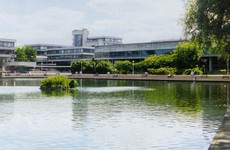 Compulsory sexual consent classes planned for UCD following revenge porn allegations