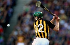 Ladies and gentlemen... your 2011 GAA Hurling All-Stars
