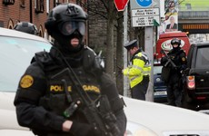 """You'd think we got 55 new gardaí"" - senior officers aren't impressed with the new armed unit"