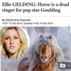 Ellie Goulding had the perfect response to this ridiculous Daily Mail article about her