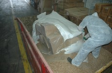 Pics: Two million cigarettes from Vietnam described as 'wood pellets' seized at Dublin Port
