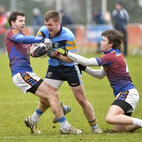 UCD hit four goals against UL to move closer to ending 20-year Sigerson Cup drought