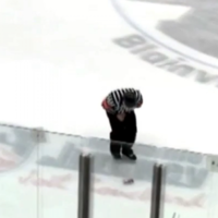 Hockey fan hits referee in groin with beer can from six rows back