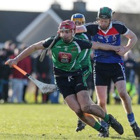 Austin Gleeson shown a red card as Davy Fitz's LIT reach Fitzgibbon Cup semi-finals