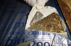A sniffer dog discovered these drugs at Portlaoise mail centre today