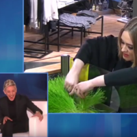 Take a break and watch Adele and Ellen's relentless smoothie shop prank