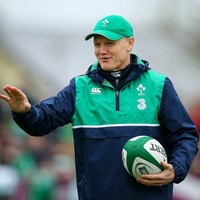 'The IRFU have done some sterling work to keep them in euros' - Schmidt