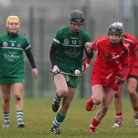 Limerick upset All-Ireland champions Cork in cracking start to camogie league