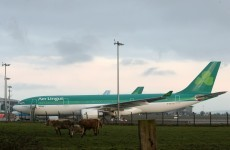 Cork and Shannon airports could be privatised - Varadkar