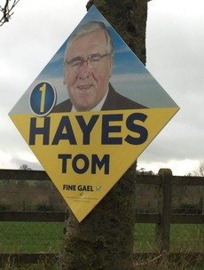 Forestry minister's posters nailed to trees in Tipperary