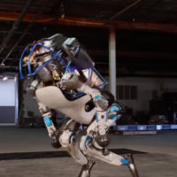 Watch Google's robot be bullied and terrorised by its creators