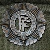 Taoiseach rules out removing 'FF' from Defence Forces logo